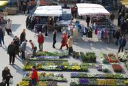 Markt 2010 004